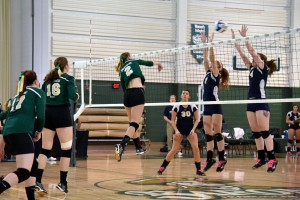 Photo by Elizabeth Feudo. Dani Link, senior, spikes the ball over the net during the Lady Barons' match versus Pitt.-Bradford.